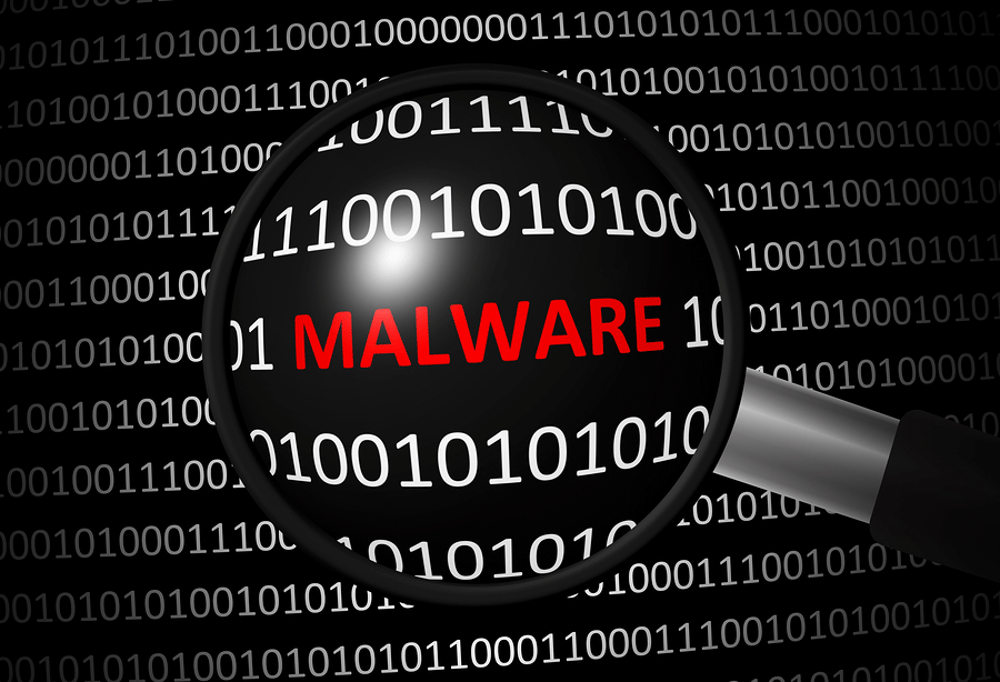 Malware-Binary Code
